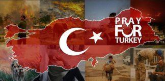 آتشسوزی گسترده در جنگلهای کشور ترکیه